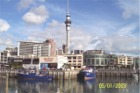 Auckland Skytower from Viaduct Harbour