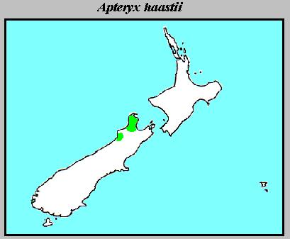 The distribution of Apteryx haastii