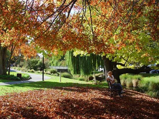 Christchurch Autumn by the Avon River