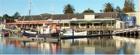 Tatapouri Sports Fishing Club Gisborne New Zealand