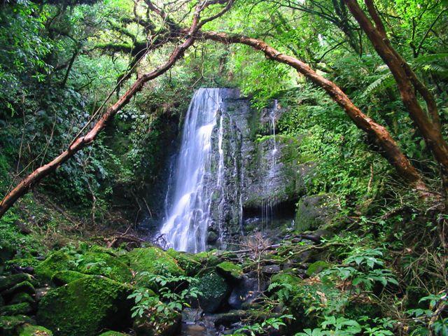 Matai Falls, New Zealand - John Murray