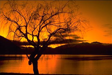 Sunset, Lake Wanaka, New Zealand - Justin Otto