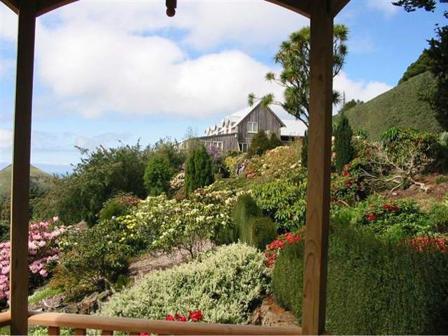 Photograph of the Larnach Castle grounds in summer.