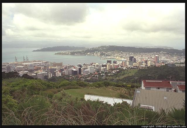 A view of Wellington, New Zealand